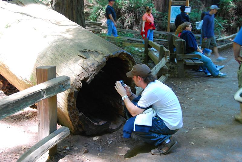 John at Muir Woods.