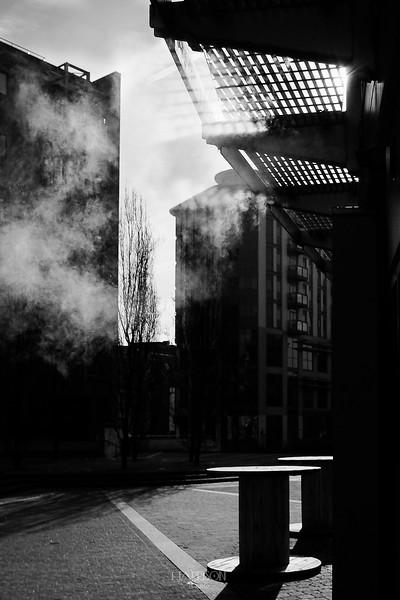 CHRISHARRISONPHOTO - STREET-FEB-24-2018-1195.jpg