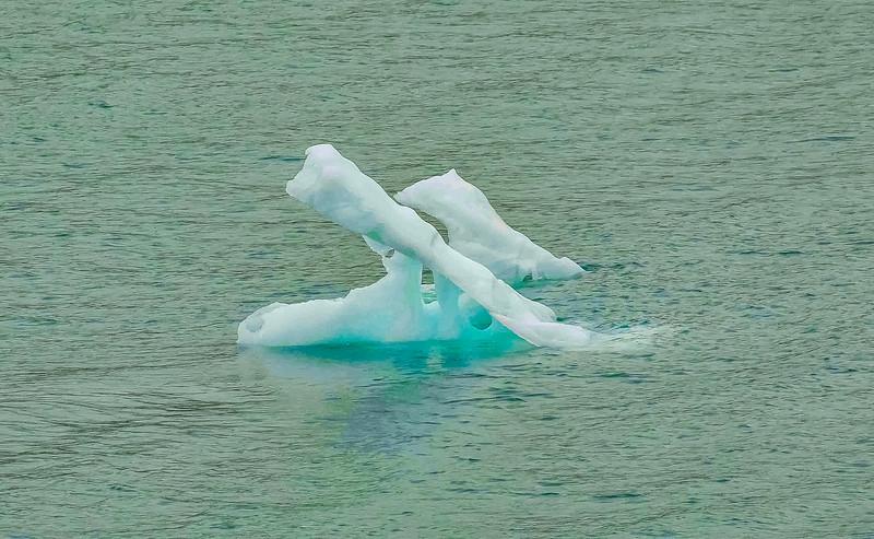 Glacier Bay 16 (1).jpg