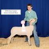 C Wyant Lamb