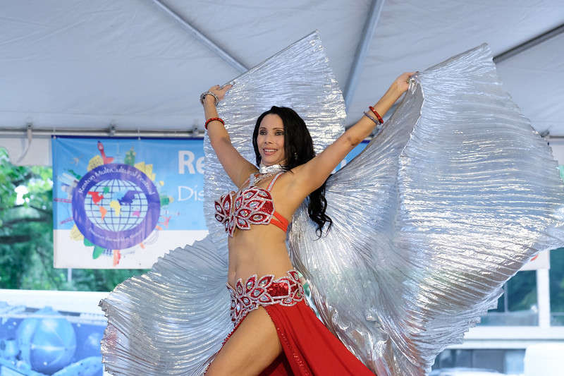20180922 501 Reston Multicultural Festival.JPG