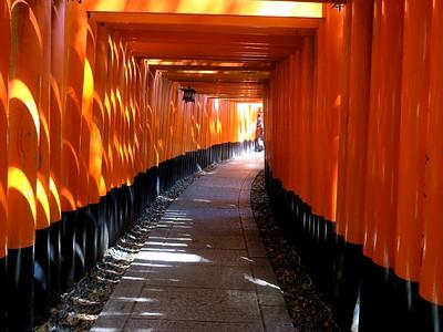 Kyoto     2018  Fushimi Inari Shrines