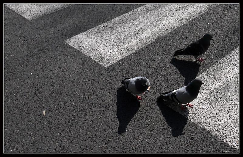 2010-03 Firenze 272.jpg