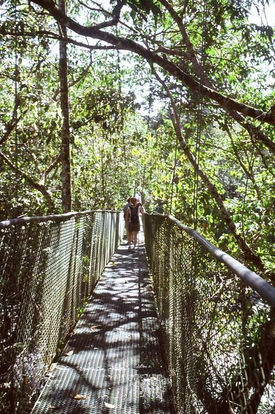 hanging.bridge.JPG