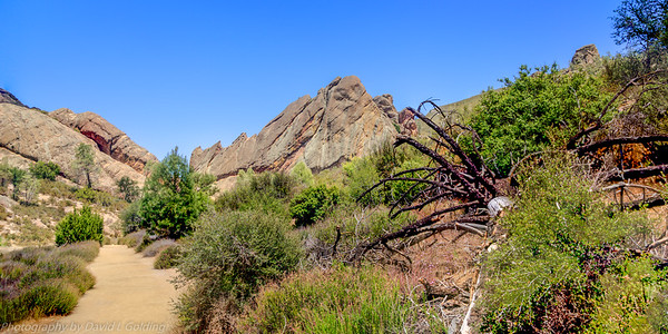 Pinnacles National Park (West) Collection