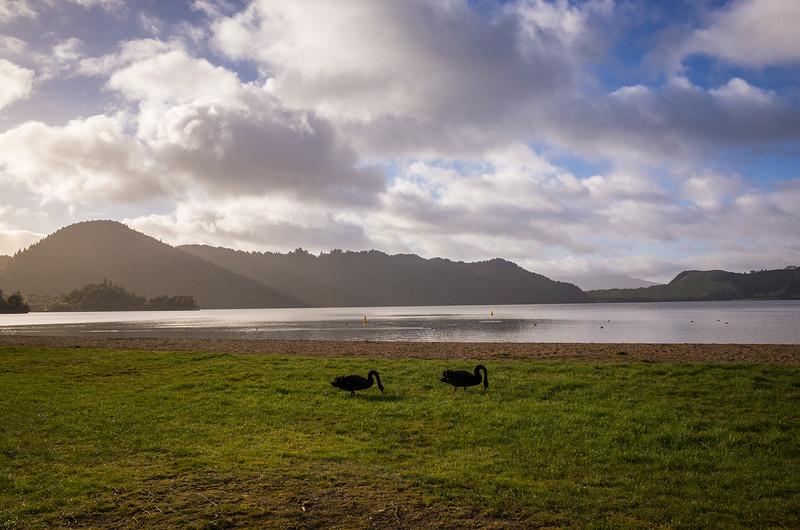 2014-08 New Zealand 1285