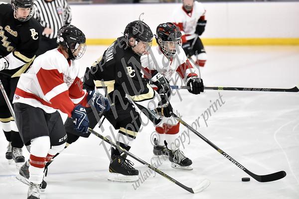 Berks Catholic vs Wilson/Cocalico/GS JV Ice Hockey 2015 - 2016