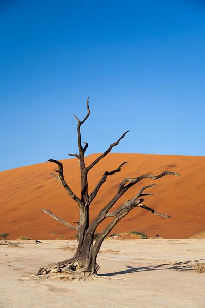 Namibia-22.jpg