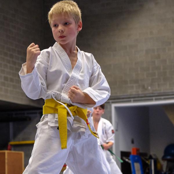 20180622_karate_examen_098.jpg