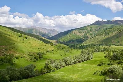 Tatvan (Bitlis)*