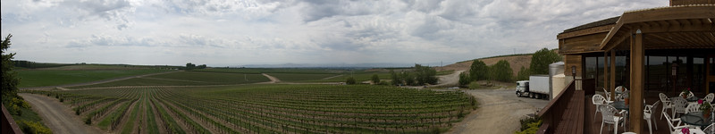 Eastern Washington Wine Tour