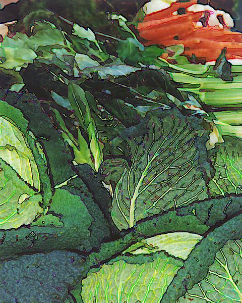 Vegetable display at farmers market in Paris - 2002