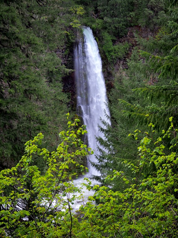 Mill Creek Falls Upper Rogue River Trail Oregon