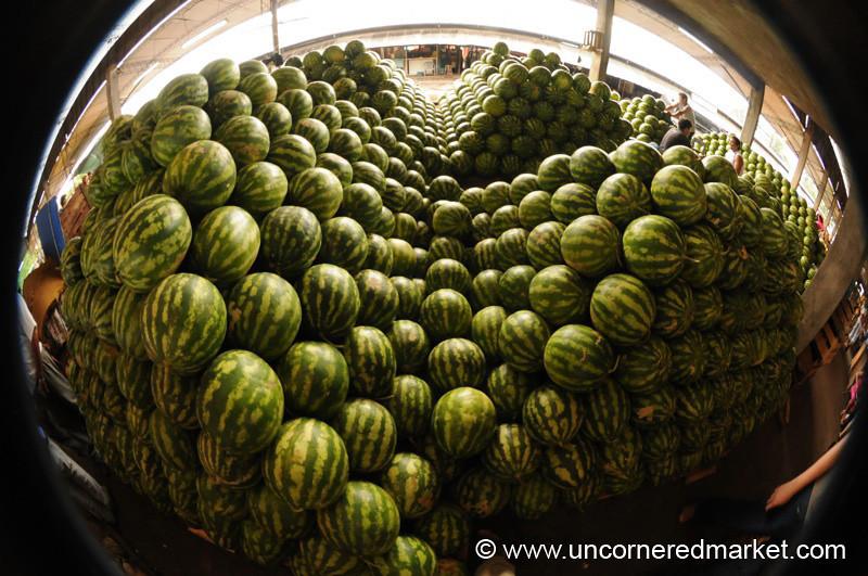 Escher Watermelon Fisheye - Asuncion, Paraguay