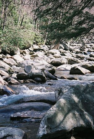 Tennessee Mountain Streams