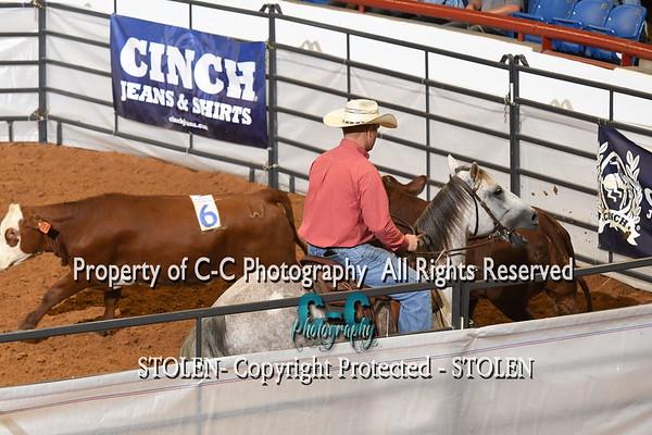 Beginner Ranch Hand - #8 RSNC Finals 2018 Fort Worth TX
