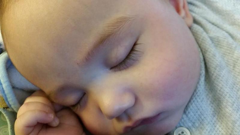 OllieSleeping20150212_92976.jpg