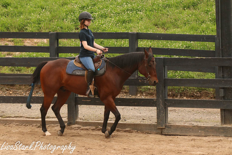 Equestrian Reserve-21.jpg