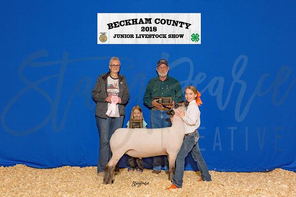 2018 Beckham County