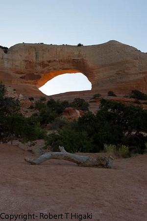Wilson's Arch