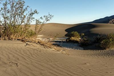 CA Desert (2016)