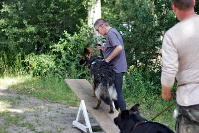 Training Dogsurvivial Ede