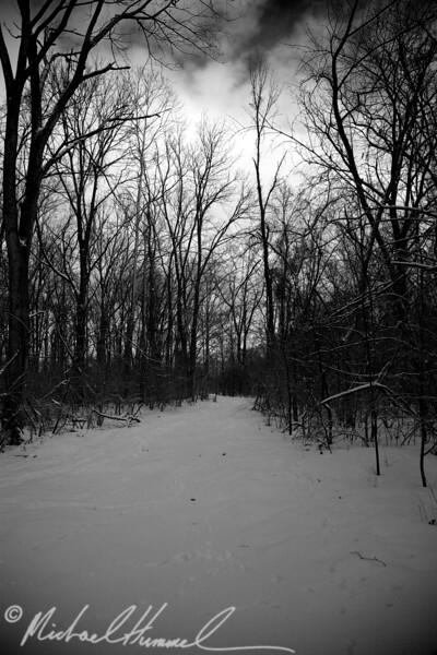 2009-02-21_17-26-14.jpg