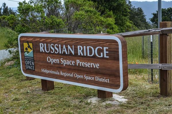 Russian Ridge