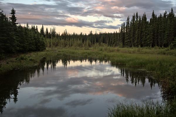 Park Entrance Trails - Denali National Park