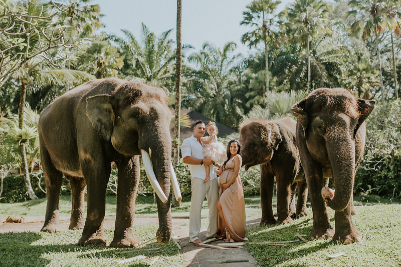 VTV_family_photoshoot_elephants_Bali_ (28).jpg
