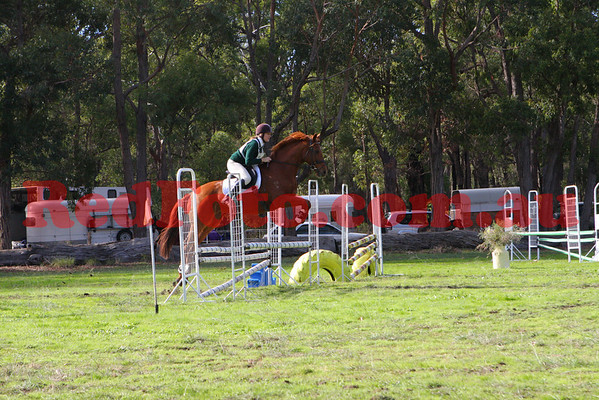 2009 06 14 Log Fence ODE ShowJumping Crops