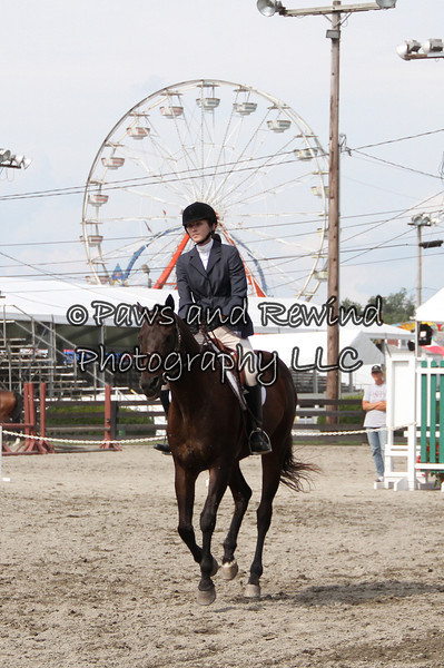 Ring II: Thoroughbred Classes and Pleasure Horse/Pony