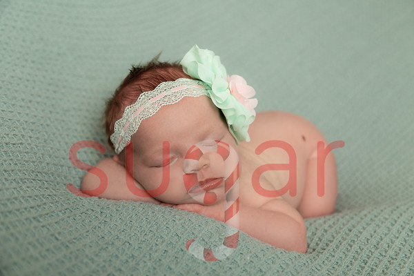 Nancy's Newborn Photoshoot