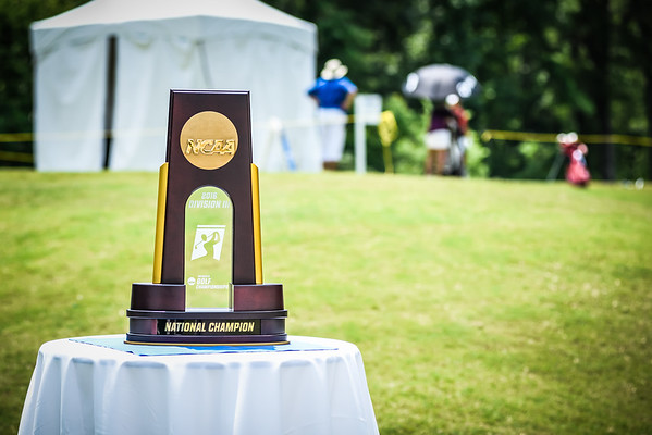 Division III National Tournament