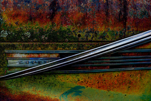 Abandoned - Tim Garton