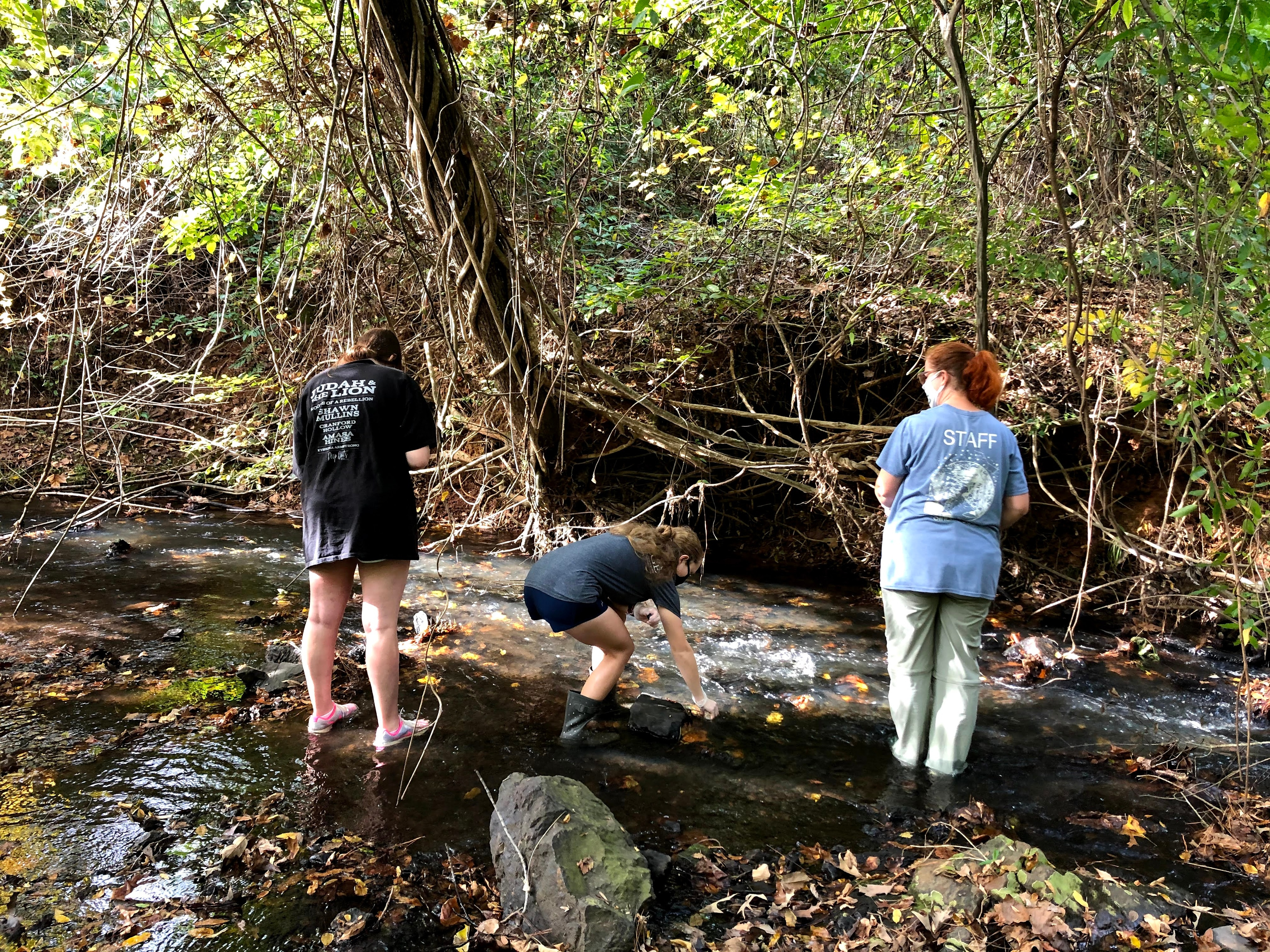 Image for Students get feet wet adopting streams during winter break