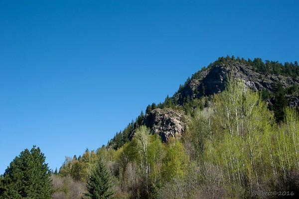 Mt. Sentinal