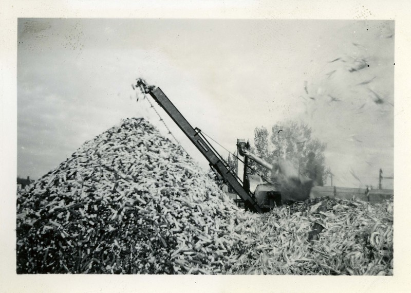 J197.  Corn pile - 1937.jpg