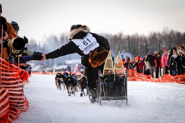 Matt Failor's 2013 Iditarod Team