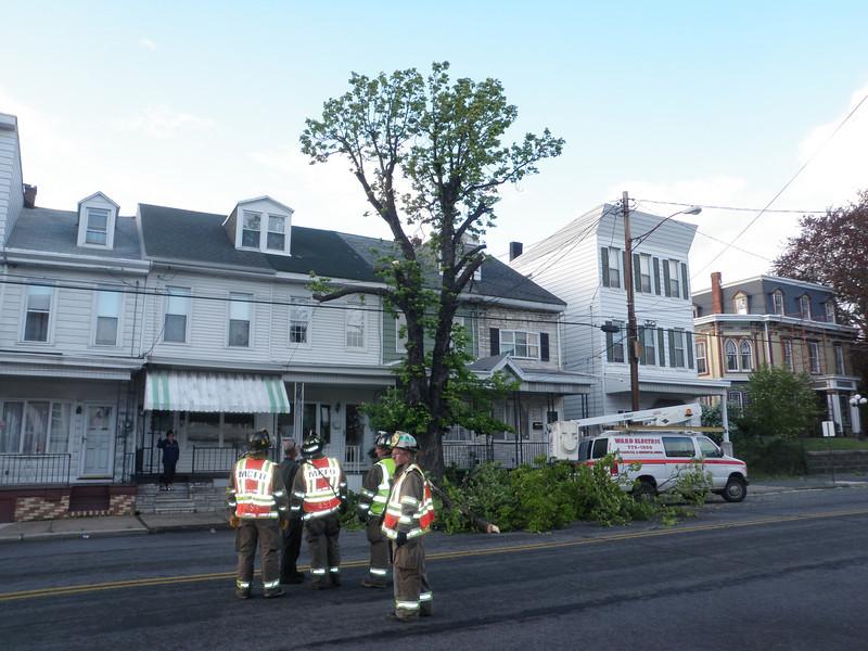 mahanoy city tree incident 5-8-2010 025.JPG