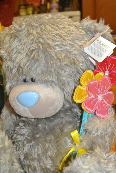 2014-02-14 Bear 'Jinan' 002.JPG