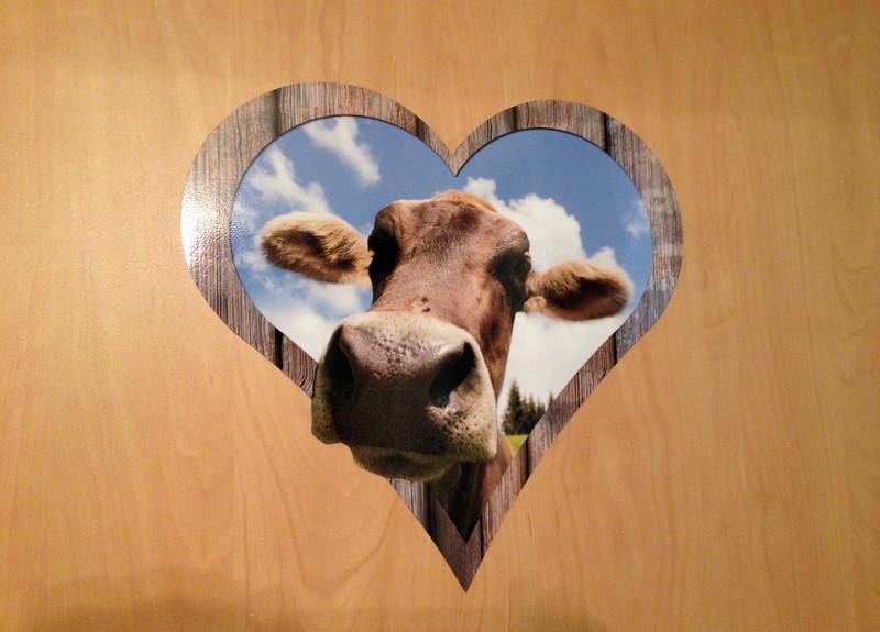 Die Kuh.jpg
