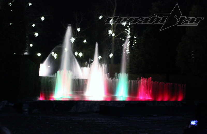 Longwood Gardens 2012-01-06 067.JPG