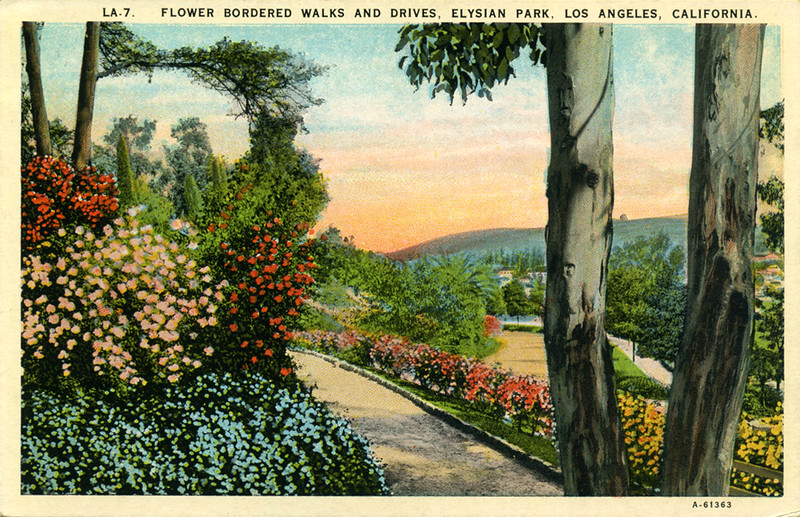 Flower Bordered Walks and Drives