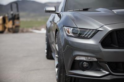 Mustang Volks (05.01.16)