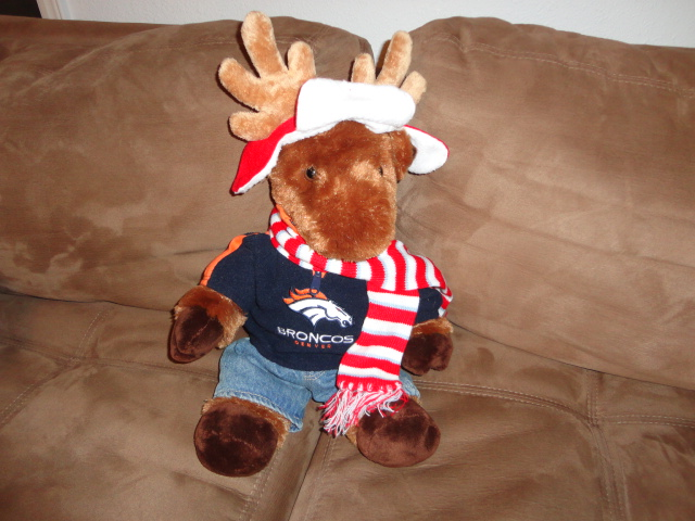 . Yes, even the Stuffed Animals are ready to support the Denver Bronco\'s! (This is Boomer the Moose) decked out in his Bronco\'s Hoodie & Jeans, along with his scarf & hat for Colorado weather... Debbie Graham