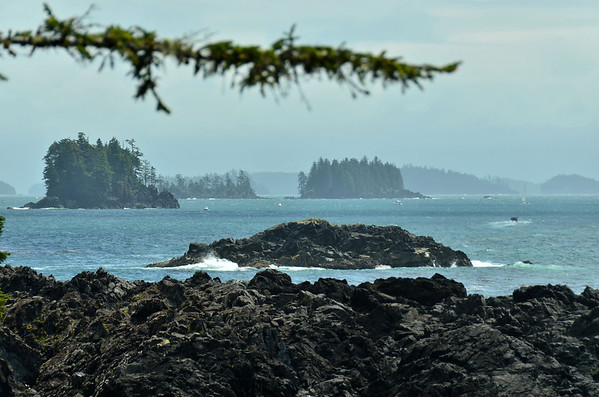 Vancouver Island and Pacific Rim