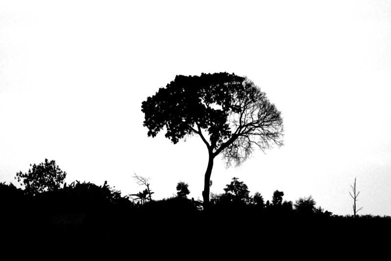 070115 4551-C Burundi - on the road to Rutana _E _L ~E ~L.JPG