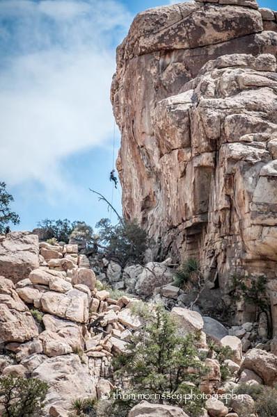 Climbers were abundant on Hidden Valley trail.