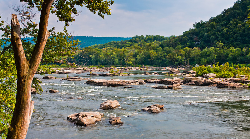 View of Potomac River from C&O Canal, Near Harpers Ferry, WVA